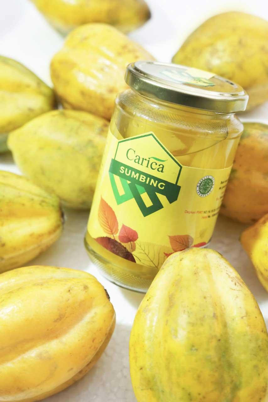 kandungan gizi buah carica