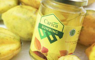 sejarah buah carica