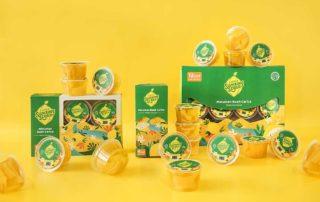 manfaat buah carica khas dieng
